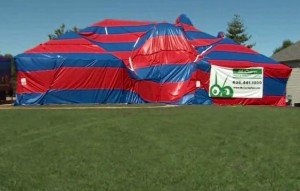 Spider House via CNN 300x191 Eight Legged Dream Home Tenants Create Nightmare for Homeowners