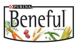 Purina Beneful Dog Food   Lbs