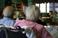 Cms Nursing Home Rating Report