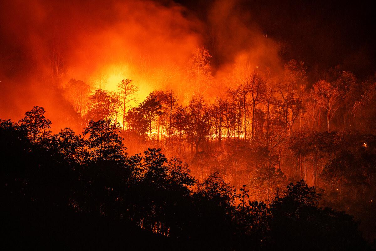 PG&E Executives Sued Personally for California Wildfire Damage
