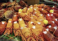 Maine Lobster Dealers May Face Price Fixing Class Action Lawsuit