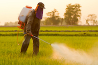 Recent Monsanto Roundup Lawsuit Targets Alleged Marketing Violations