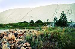 Amianto exposicion ambiental