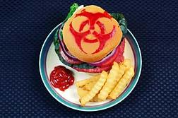 salmonella a food borne illness essay