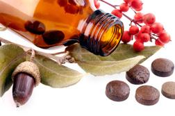 homeopathicremediesfraud