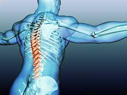 Spinal Pump