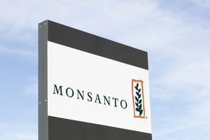 Bayer's Monsanto Purchase Sews Seeds of Discontent Amongst Shareholders