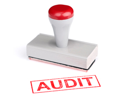 tax audit help | tax audit | how to prepare for irs tax audi