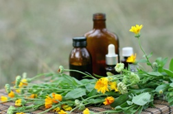 Herbal Remedies May Be Harmful to Health