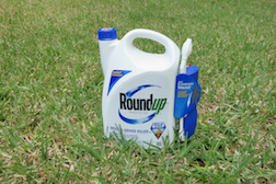 More Evidence Linking Monsanto's Roundup to Cancer